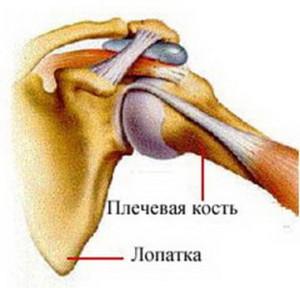 Какую диагностику проходить при подагрическом артрите